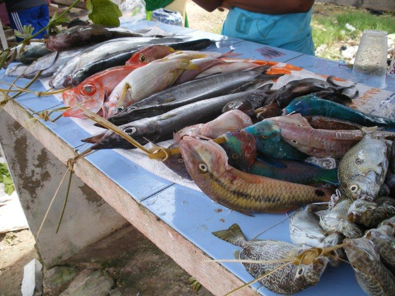Biak, Papua fish market